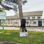 Abergele Town Hall 4