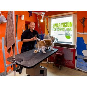 Mucky Paws Dog Grooming Palour 3
